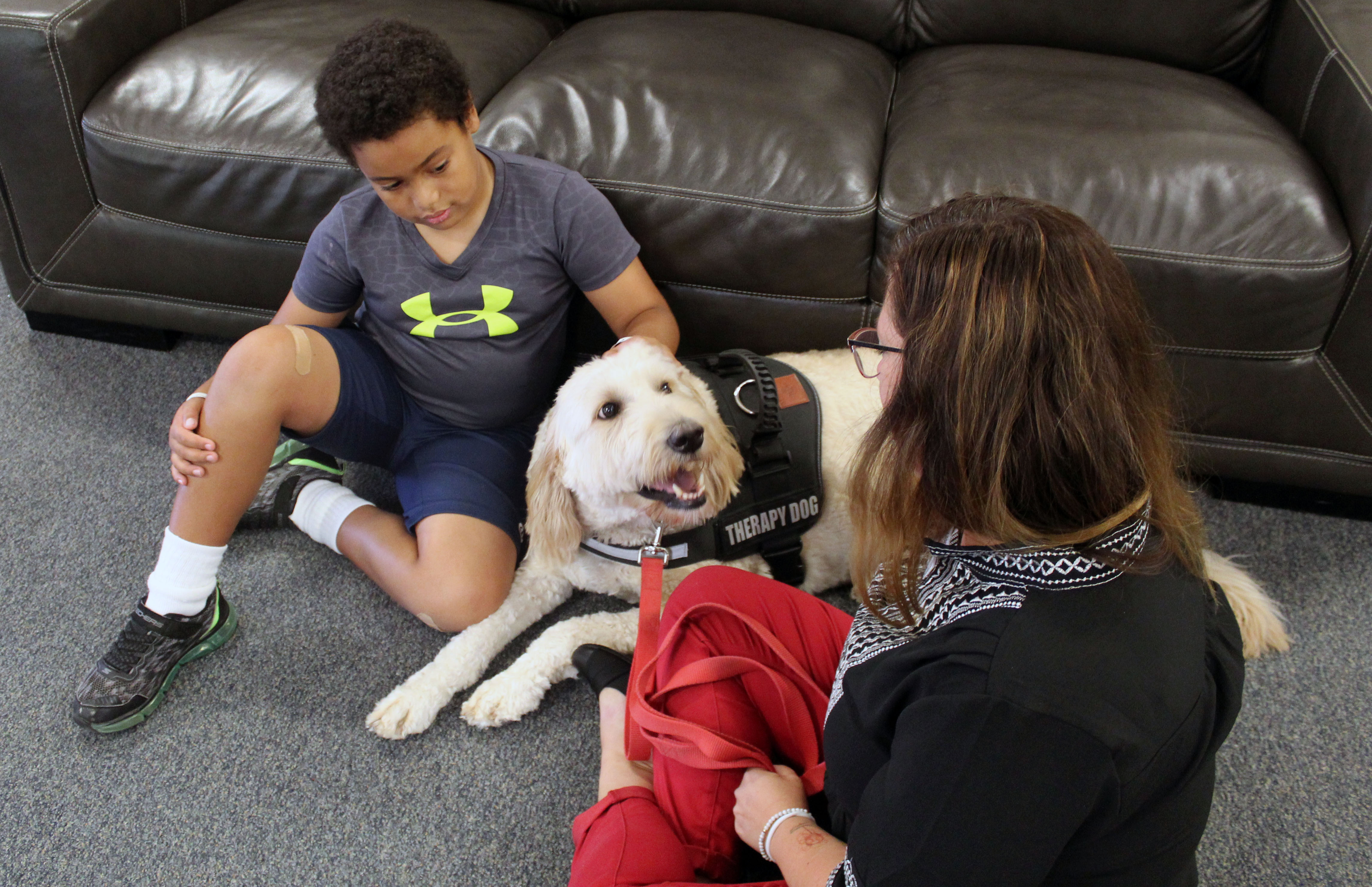 Therapy dog Rue considered important part of Hickory Hill Elementary family