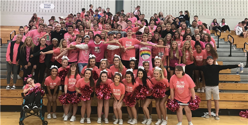 PLHS students show off Dig Pink T-Shirts in gym during a volleyball game.