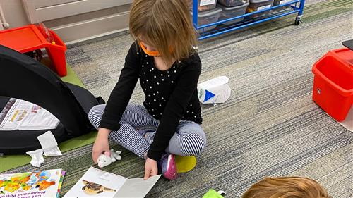 Anderson Grove students adopt reading buddies